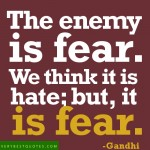 The Enemy is Fear