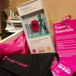 The MoonWalk NYC 2013: Support Breast Cancer Initiatives